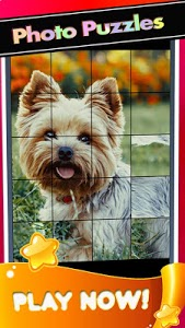 screenshot of Puppies Yorkshire Pictures-Dog Animal Puzzle Game version 1.1.1