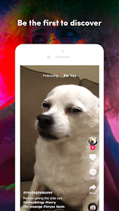 screenshot of TikTok Lite version 3.8.1