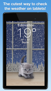 screenshot of Weather Kitty version 1.2
