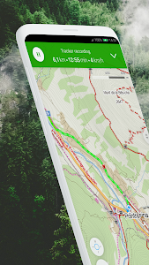 screenshot of Windy Maps version Varies with device